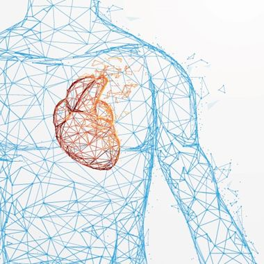 Cardiology Structured Reporting 2020: The Heart of the Matter - Cover