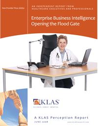 Enterprise Business Intelligence Perception 2008
