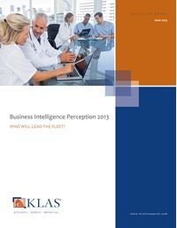 Business Intelligence Perception 2013
