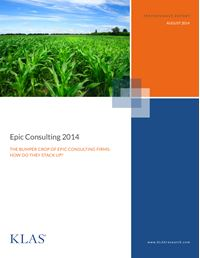 Epic Consulting 2014