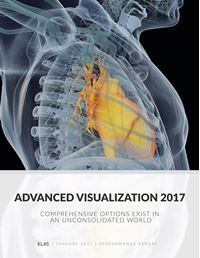 Advanced Visualization 2017